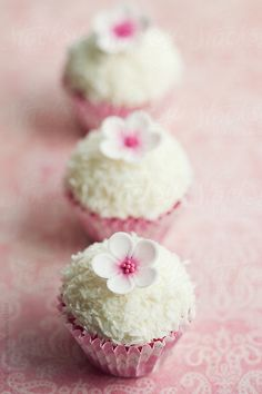 Coconut cupcakes by Ruth Black