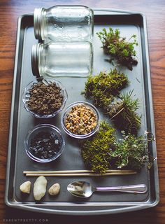 DIY Moss Terrarium Craft: You've likely seen terrariums popping up as decor accents all over the home-design world. Now your kids can craft their very own self-contained eco-environment!  Source: Parent Pretty