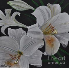 """Happy Easter to all celebrating. Happy Pesach V to all celebrating. I hope you all get to relax and enjoy your family and friends.  Easter Lilies 10"""" x 10"""" Acrylic  Prints only original not available.  Website: sallytiskarice.com Follow on twitter https://mobile.twitter.com/SallyTiskaRice/followers"""