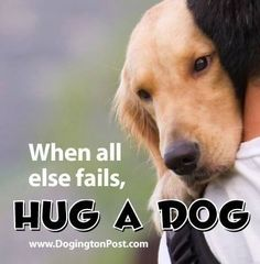 When all else fails, hug a dog.