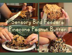 Sensory Bird Feeders