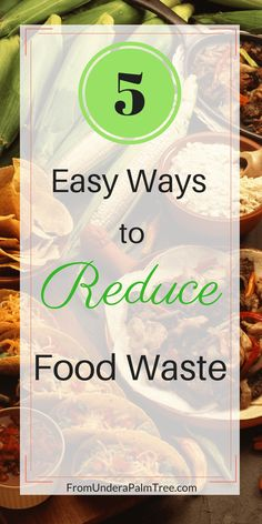 how do I reduce food waste | how to reduce food waste | food waste in the US | food waste | food | waste issue | food waste awareness | how to prevent food waste | how to live more eco-friendly | how to reduce my carbon footprint | sustainable living | sustainability |