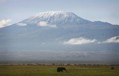 Le Monde : A l'assaut du Kilimandjaro (1/2)