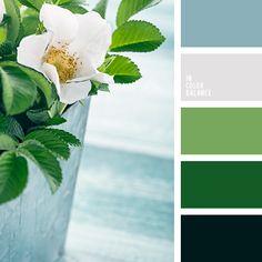 Цветовая палитра №3859