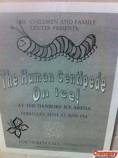 centipede ice