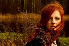 Wistful Fairytale