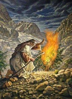 Satan is The Talking Fire Burning Bush. Religious Pictures, Bible Pictures, Jesus Pictures, Religious Art, Religion, La Sainte Bible, Burning Bush, Lds Art, Bible Illustrations