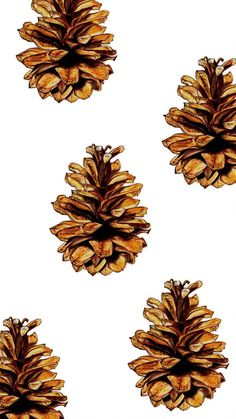 2017 Fall Autumn Phone Backgrounds - Fall Phone Wallpapers Pinecones