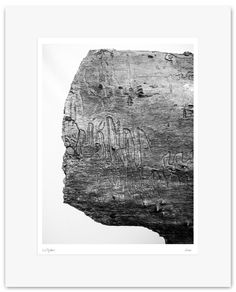 Fine Art Print, Black and White Photography - Archival Print - Mounted, Limited Edition, Contemporary Wall Art - Wood - Bosco #06 by Muteimage on Etsy