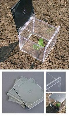 Mini greenhouse Assemble the four front faces with a second one of a CD box distributing the latter as a cover.
