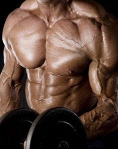 Testosterone and Muscle Growth - Mean Lean Muscle Mass Weight Loss Results, Easy Weight Loss, Healthy Weight Loss, How To Lose Weight Fast, Best Testosterone Boosters, Increase Testosterone, Weight Lifting Supplements, Chest Workout For Men, Lean Body