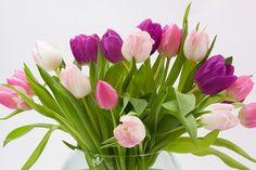 4 λύσεις για να διατηρήσεις τα λουλούδια στο βάζο! Η άνοιξη είναι εδώ και δεν υπάρχει τίποτα πιο όμορφο από το να διακοσμήσετε το σπίτι σας με φυσικά