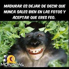 Pues eso, mi foto! #memes #chistes #chistesmalos #imagenesgraciosas #humor http://www.megamemeces.com/memeces/imagenes-de-humor-vs-videos-divertidos