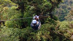One of our stops in Monteverde, Costa Rica. Ziplining through the rainforest was absolutely breathtaking.