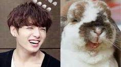 #bts #jungkook 🌟🌙 #bunny Animal Ears, Jikook, Spirit Animal, Bts Memes, Bts Jungkook, Celebrities, Funny, Cute, Rabbit