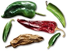 In the Yucatán, mild, not mind-blowing, chiles are appreciated for their subtle…