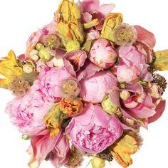 Scabiosas, garden spray roses, sedum, peonies, calla lilies, cockscomb, parrot tulips, and cymbidium orchids,