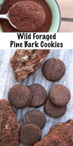 Bark Cookies (with a Side of Hope) Wild Foraged Pine Bark Cookies (with a Side of Hope.)Wild Foraged Pine Bark Cookies (with a Side of Hope. Cookie Recipes, Dessert Recipes, Wild Edibles, Christmas Chocolate, Survival Food, Survival Prepping, Mets, Just In Case, Sweet Treats