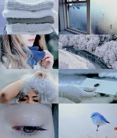 House aesthetics - Ravenclaw/Winter