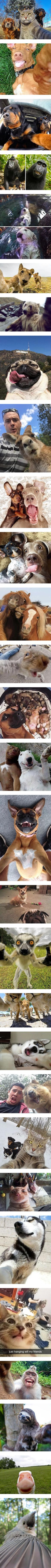 These animals are so good at the selfie game