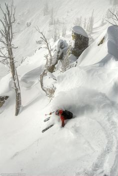 Perfect skiing photography    #skiing #sport #snow #blueprint  http://www.blueprinteyewear.com/