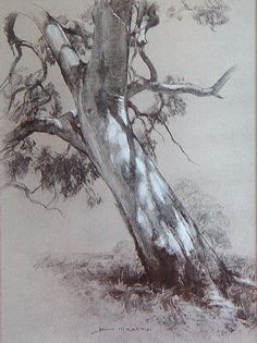 "John McCartin  ""Dappled Light"", 41cm x 30cm, Charcoal and white pastel on toned paper."