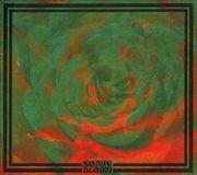 Sonic Bloom [CD], 21299308
