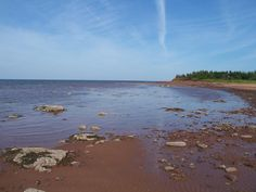 Pugwash NS- spent a summer collecting veggies from the garden and clam digging.