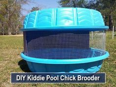 DIY Kiddie Pool Chick Brooder – easy & affordable solution… - All For Garden Chicken Brooder Box, Chicken Cages, Portable Chicken Coop, Chicken Pen, Best Chicken Coop, Building A Chicken Coop, Chicken Houses, Chicken Nesting Boxes, Farm Chicken