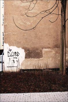 human boombox: Foto