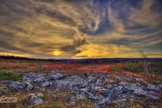 Location of Dolly Sods Wilderness in West Virginia. Description from…