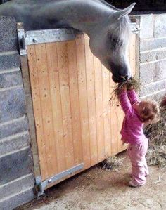 A little #girl and her #horse