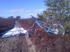 First ride on the new full susser on some gorgeous Cairngorm hill trails...