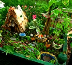 One of my favorites, this fairy garden calls to mind elfin adventures and wooded forests.