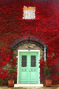 Green door, Provence. Beautiful contrast of the pale green door with the vivid red plants covering the walls all around