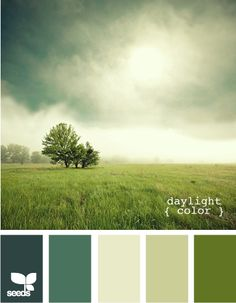 Irish countryside inspired paints! This green palette is refreshing and uplifting and would be beautiful as an accent wall. Emerald green is bold and masculine for a man cave or study, while the pale moss is an excellent backdrop to ground any room.