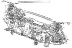 Chinook bi rotor helicopter - cutaway line art