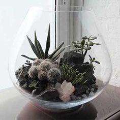 Glass Terrarium - Hermetica London