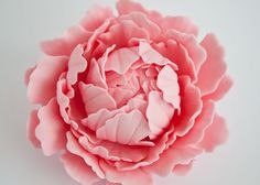 How to make a gum paste peony (part 2) on http://cakejournal.com/tutorials/how-to-make-a-gum-paste-peony-part-2/