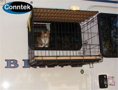 Give your small pet some air, without the risk of them running off! #cat #rv…