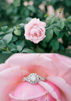 Dallas Arboretum & Botanical Gardens Engagement Photos, Engagement Ring, Texas Wedding Photographers