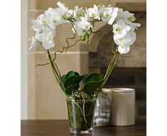 16 best valentines day gift guide bloom silk flowers images on potted phalaenopsis heart bloom artificial flowers mightylinksfo