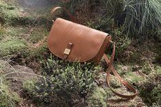 Mulberry Tessie Bag Collection