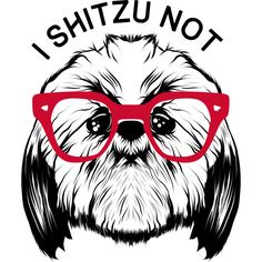 I SHITZU NOT is a T Shirt designed by mikepacheco to illustrate your life and is available at Design By Humans