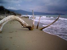 Mare d'inverno: Alberese marina
