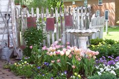 Fern Hill Gifts and Quilts Fern Hill, Amana Colonies, Cedar Rapids, Gnome Garden, Blooming Flowers, Flower Beds, Ferns, Iowa, Mother Nature