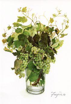 ぶどうの枝(ナイアガラ) 水彩 橋本不二子さん(1935~)は明るい透明な色彩の水彩やアクリルで 花の絵を描いています。