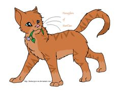 {Eevee Lover / Amberheart Or Amberclaw}: Honeyfern my #4 Favorite cat in the Warrior Cats series.