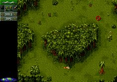 Cannon Fodder (Commodore Amiga)
