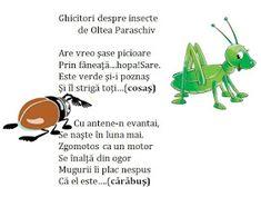 Infant Activities, Teacher Resources, Education, Blog, Floral, Decor, Insects, Kids, Decoration